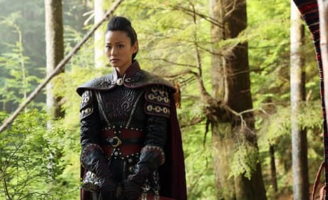 Mulan Picture