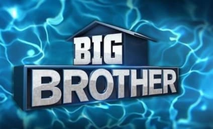 Our Dream Cast for Big Brother All-Stars 2