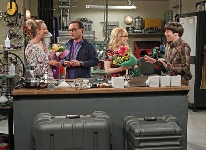 Watch The Big Bang Theory Season 9 Episode 19 Online