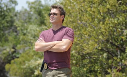 The Glades Review: Cowboy Up