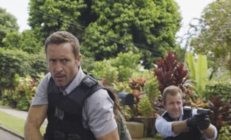 Seeking Criminals - Hawaii Five-0 Season 8 Episode 1