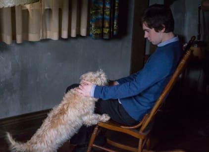 Watch Bates Motel Season 3 Episode 8 Online