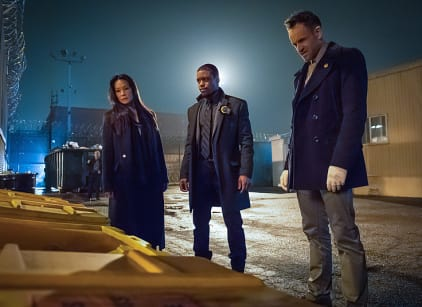 Watch Elementary Season 3 Episode 22 Online