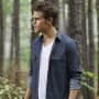 Stefan in the Woods - The Vampire Diaries Season 7 Episode 2