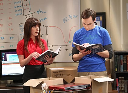 Watch The Big Bang Theory Season 6 Episode 3 Online