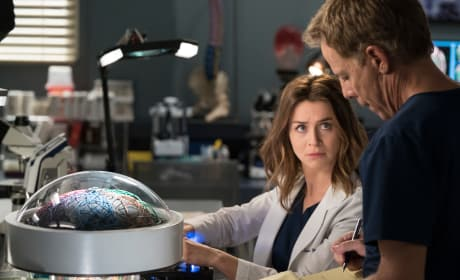 Checklist - Grey's Anatomy Season 15 Episode 1