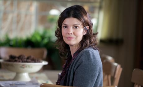 Jeanne Tripplehorn as Barb