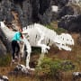 Jaime Builds Her Dinosaur