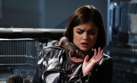 I Like Animals - Pretty Little Liars Season 6 Episode 6