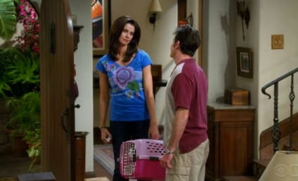 """Two and a Half Men Review: """"Tinkle Like a Princess"""""""