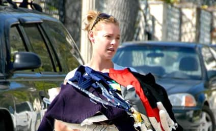 Katherine Heigl Taken to the Cleaners