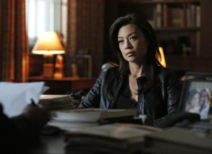 Watch Agents of S.H.I.E.L.D. Season 2 Episode 13 Online
