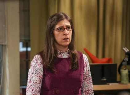 Watch The Big Bang Theory Season 10 Episode 16 Online