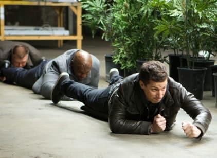 Watch Brooklyn Nine-Nine Season 3 Episode 16 Online