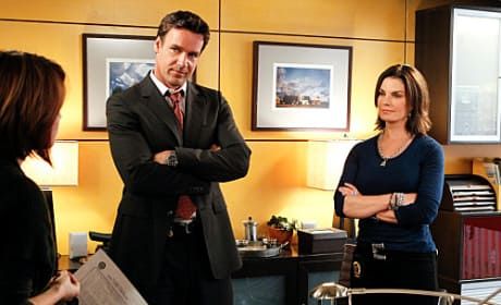 David James Elliott on CSI: NY
