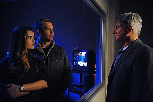 Gibbs, Tony and Ziva Pic