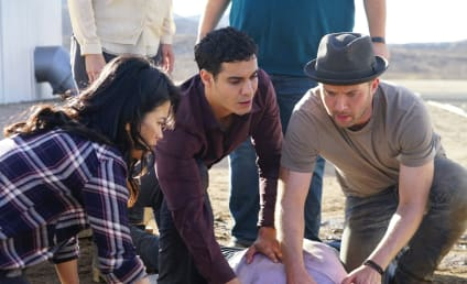 Scorpion Season 3 Episode 12 Review: Ice Ca-Cabes