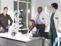 Body of Proof Season 2 Episode 12