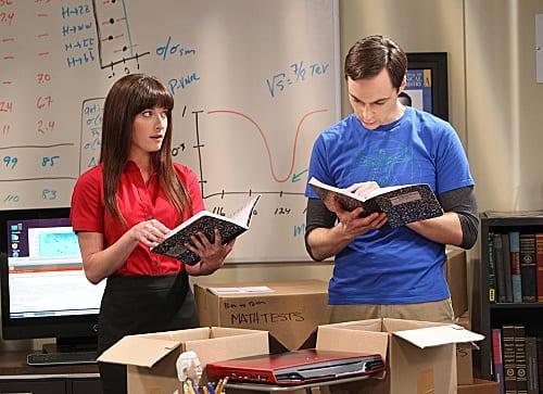 Sheldon Hires an Assitant