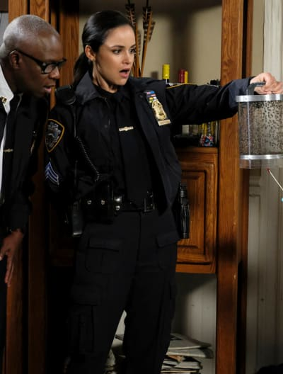 Starstruck - Brooklyn Nine-Nine Season 6 Episode 10