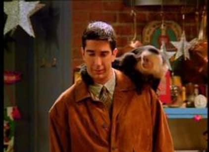 Watch Friends Season 1 Episode 10 Online