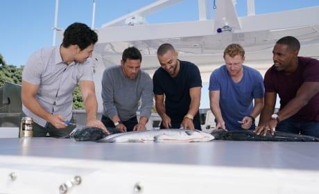 Gutting Team - Grey's Anatomy Season 14 Episode 6