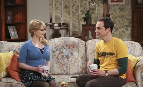Reverting Back - The Big Bang Theory