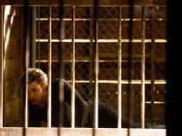 Stefan in a Panic