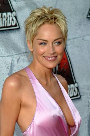 Sharon Stone Signs on for Law & Order: SVU Arc - TV Fanatic