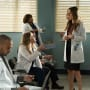 Presentation Day Jitters - Grey's Anatomy Season 14 Episode 20