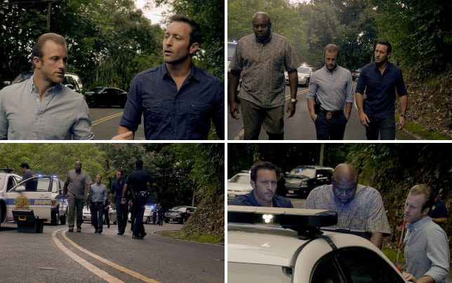 Steve and danny together hawaii five 0 s5e25