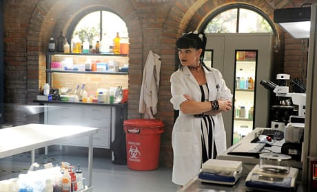 Pauley Perrette as Abby Sciuto Photo
