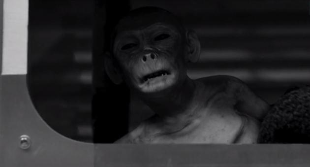 Ahhhh Jacksonnnn! - Zoo Season 3 Episode 6