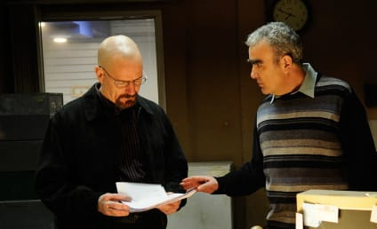 Breaking Bad Review: I Am the Danger!