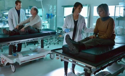 The Strain Picture Preview: Testing A Hypothesis