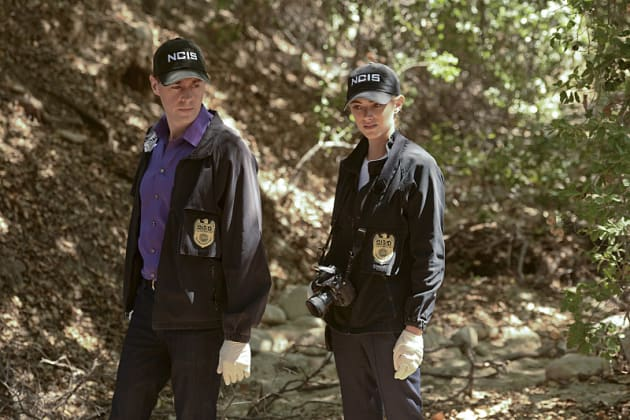 NCIS Season 13 Episode 3 Review: Incognito - TV Fanatic