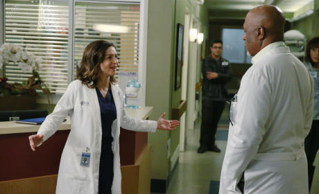 Amelia and Richard - Grey's Anatomy Season 11 Episode 22
