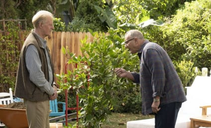 Modern Family Season 10 Episode 9 Review: Putting Down Roots