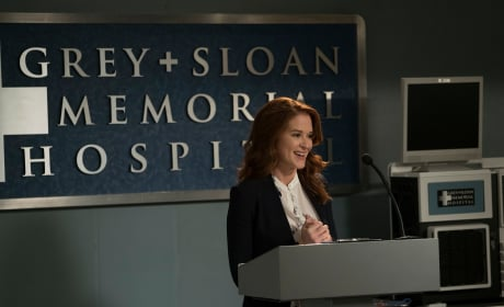April the Judge - Grey's Anatomy Season 14 Episode 20