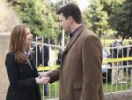 Dana Delany on Castle