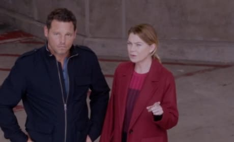 Grey's Anatomy Promo: Happy 300!