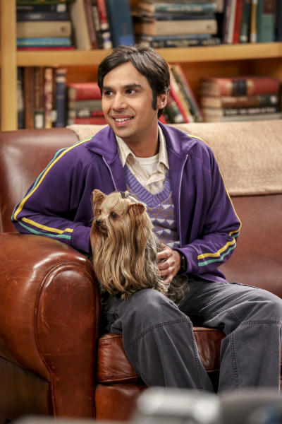 Raj and the Dog - The Big Bang Theory Season 10 Episode 18