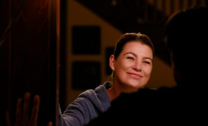 Grey's Anatomy Premiere Photos: Will Meredith Fess Up?