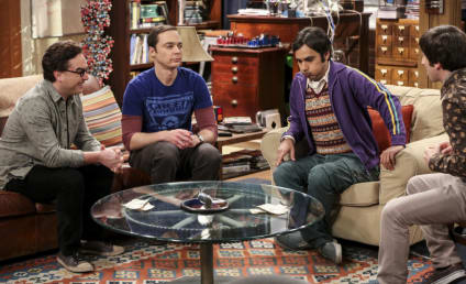The Big Bang Theory Photo Preview: You're On Your Own!