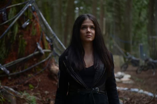 Working Together - The 100