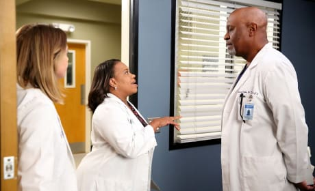Tell Him, Bailey! - Grey's Anatomy Season 12 Episode 2