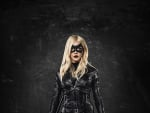 Black Canary is Born - Arrow