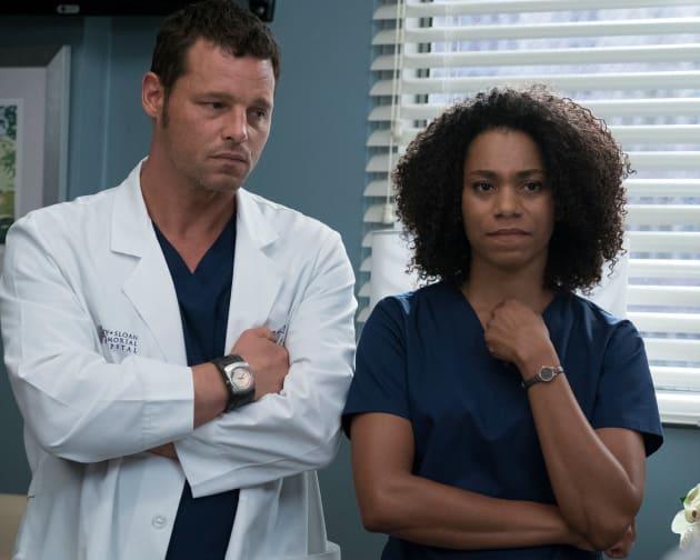 Watch Greys Anatomy Season 14 Episode 4 Online Tv Fanatic