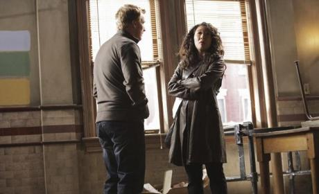 Crowen in Action
