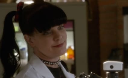 Watch NCIS Online: Season 13 Episode 17